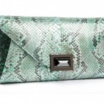 clutch-in-pitone-verde-kara-ross